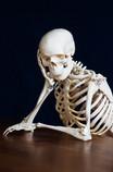 Bei Rückenschmerzen hilft die Praxis für Chiropraktik in Bad Salzuflen.